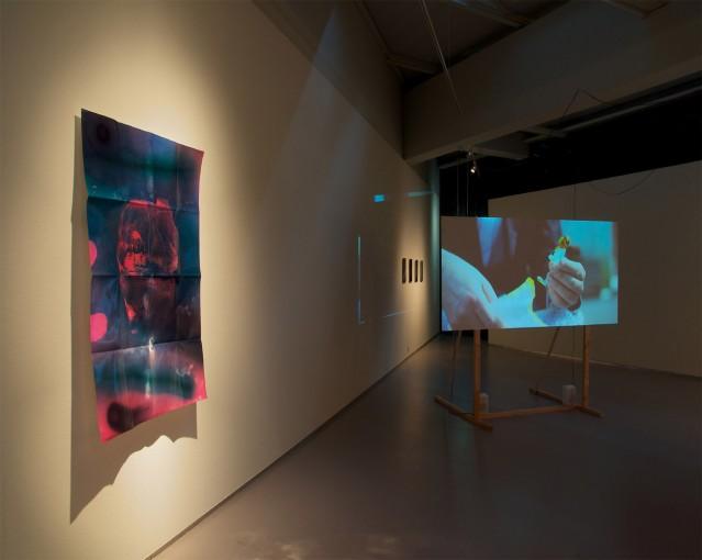 The Nest, 2011; installation view at COBRA  Museum, COBRA Art Prize, Amstelveen (NL)