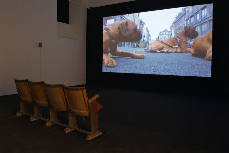 What we do and what we are, 2010, video 40'; installation view at Monitor, Rome