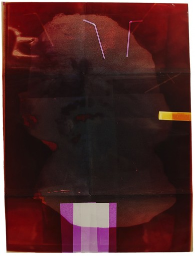 Neandergram, 2013, unique color photogram, 101,6x76,2 cm framed