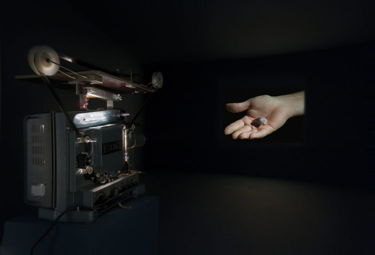 Pace, 2009, installation, 16 mm film, variable dimensions