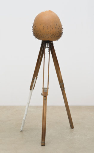 The Measure of Ecstasy and Terror, 2008 Gourd, wood, tripod, 134,62 x 68,58 x 68,58 cm