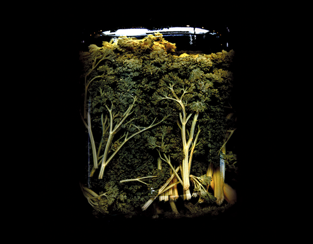 Nino-Migliori-Tempo-rallentato-2009
